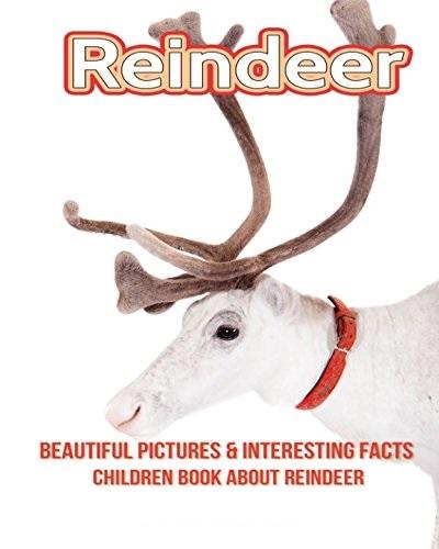 Reindeerbook.jpg