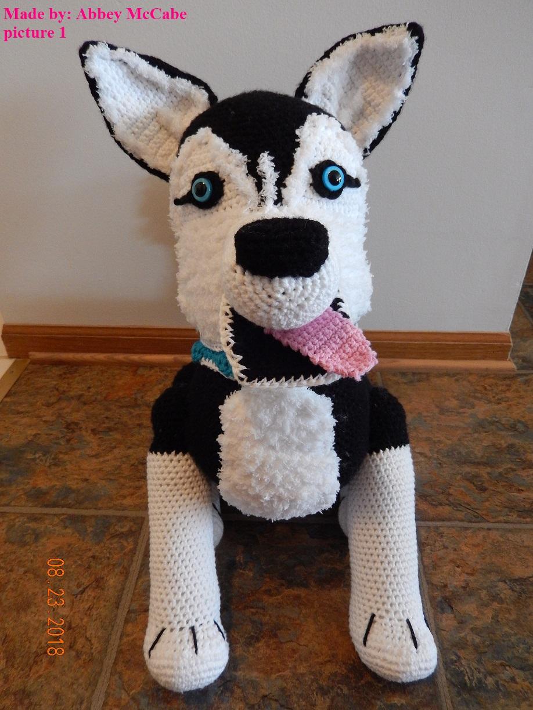Abbey McCabe Siberian Husky Dog1.JPG